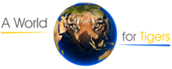 World of Tigers Logo
